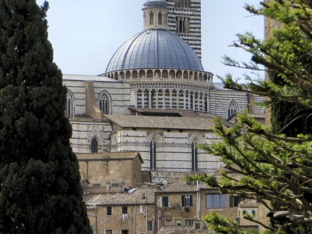 Cattedrale Siena visita guidata dal 1 maggio