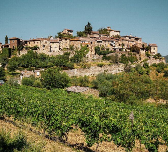 tour of chianti: chianti village and vineyards